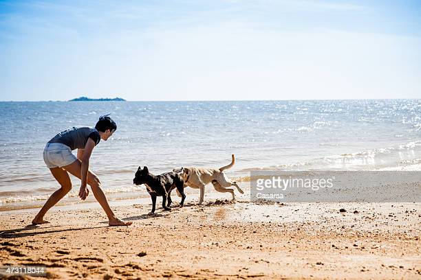 Playing with dogs on the beach
