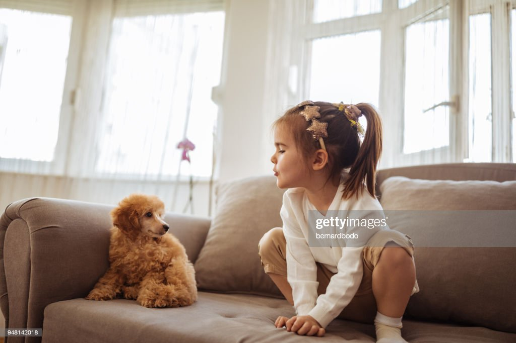 Playing with her new puppy : Stock Photo