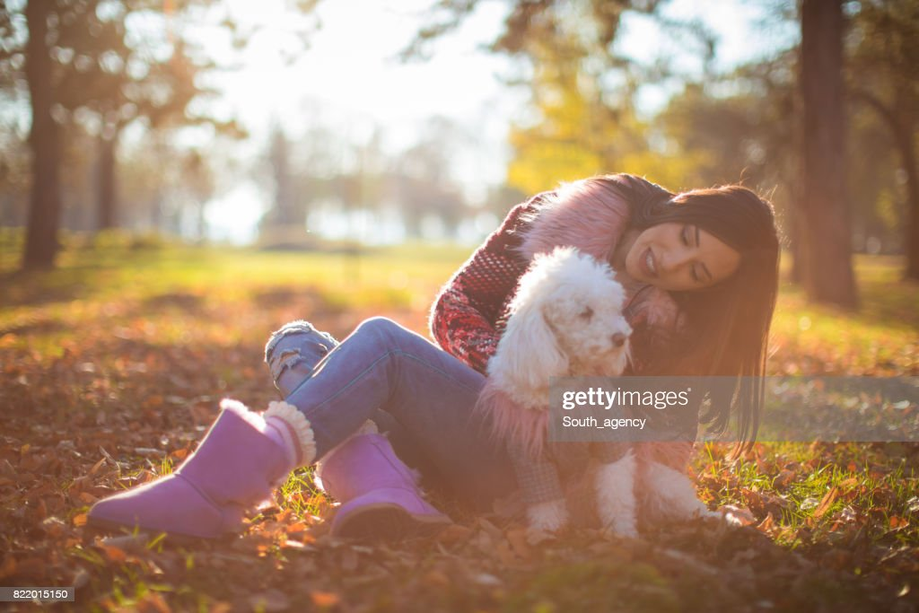 Playing with pet in park : Stock Photo