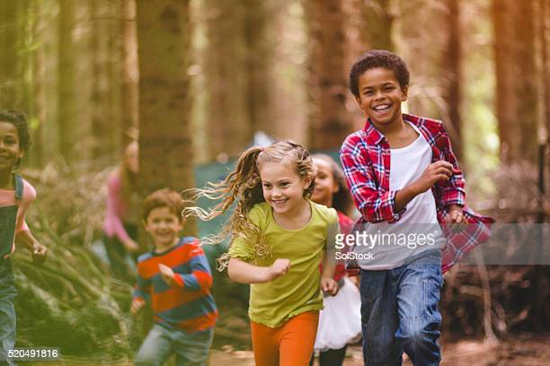 playtime in the woods - woodland stock pictures, royalty-free photos & images
