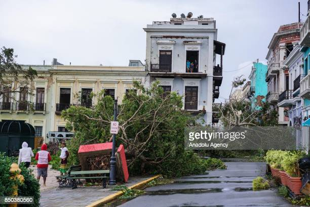 Plaza Colon is covered in fallen trees after Hurricane Maria at Old San Juan in San Juan Puerto Rico on September 20 2017
