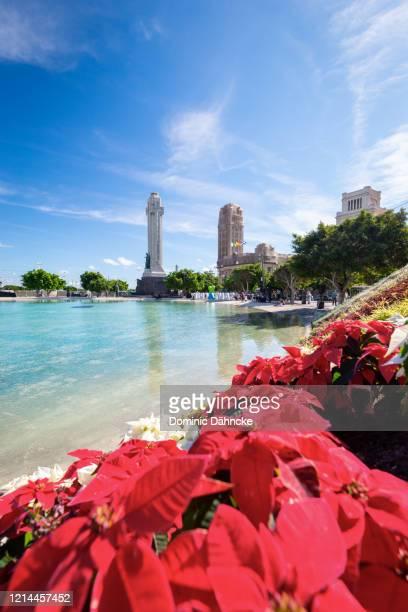 """""""plaza de españa"""" square with christmas decoration, in santa cruz de tenerife city (canary islands) - dähncke fotografías e imágenes de stock"""