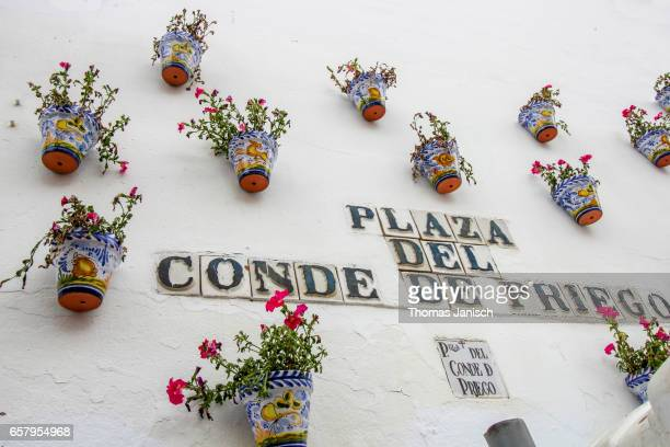 Plaza decorated with flowers during Patios Festival, Córdoba