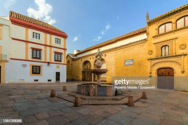 plaza del potro, cordoba, spain - andalucia fotografías e imágenes de stock