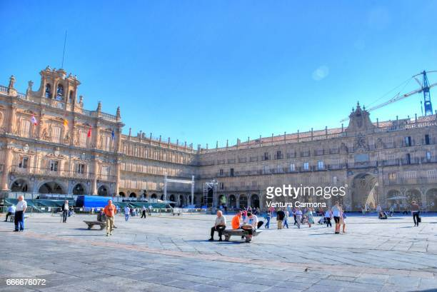plaza mayor - salamanca, spain - akademisches lernen stock pictures, royalty-free photos & images