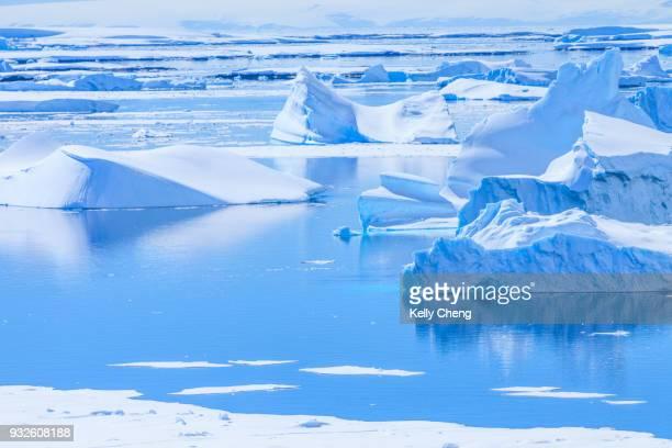 pleneau island in antarctica - snow scene stock photos and pictures