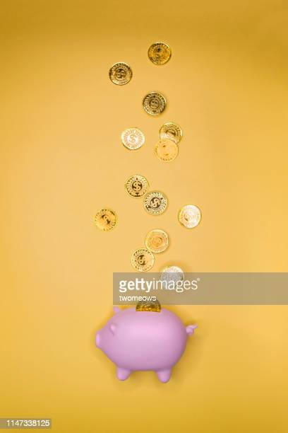 plentiful of gold coins fall on piggy bank. - piggy bank stock pictures, royalty-free photos & images