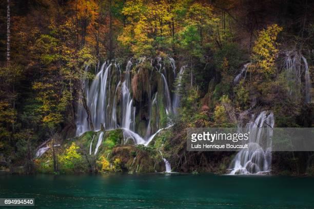 plitvice lakes & autumn - pets stockfoto's en -beelden
