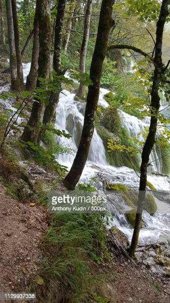 plitvice lakes - crawford notch stock pictures, royalty-free photos & images
