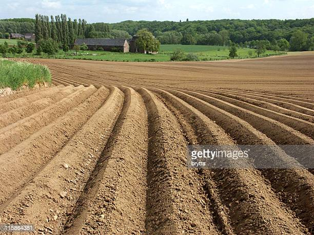 Ploughed farmland with furrows,ready for crops in springtime