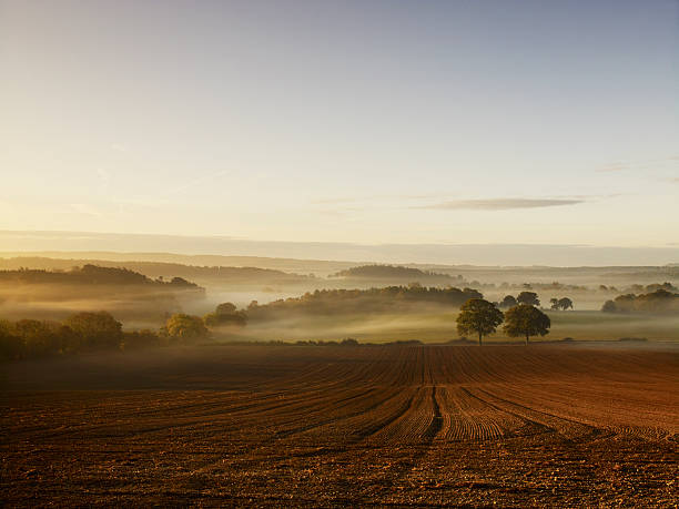A ploughed field and view over surrounding undulating hills, at dawn with a mist rising from the land.