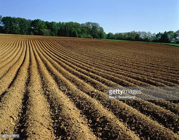 ploughed field, baden-wuerttemberg, germany - solo - fotografias e filmes do acervo