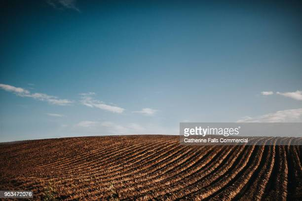 Ploughed Field of soil
