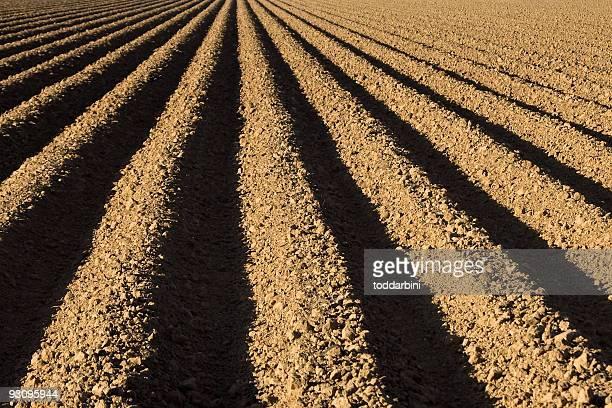 農場に ploughed フィールド - 休耕田 ストックフォトと画像