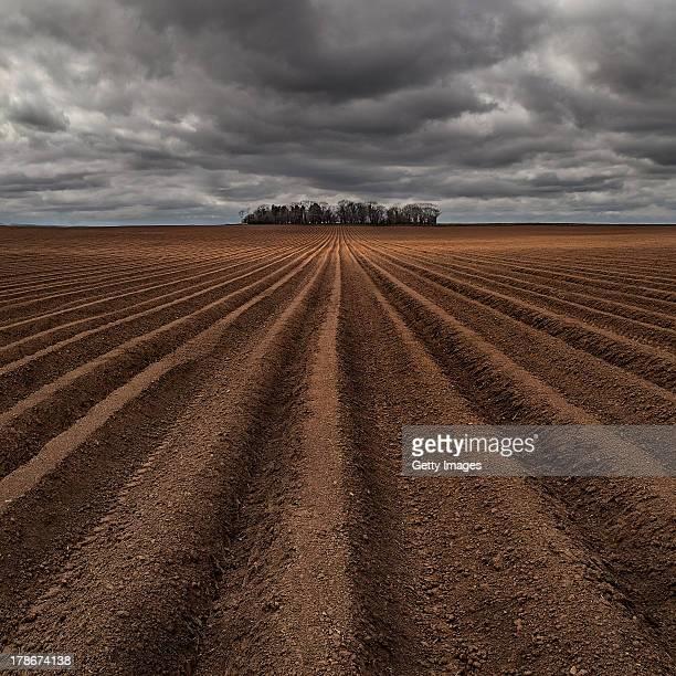 ploughed fields - 耕す ストックフォトと画像