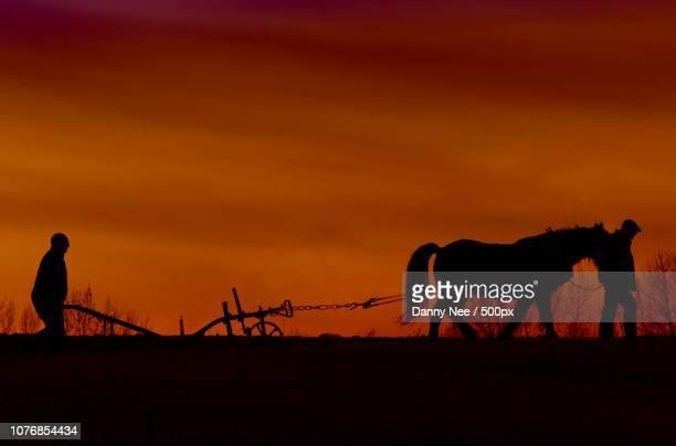 ploughing - nee nee fotografías e imágenes de stock