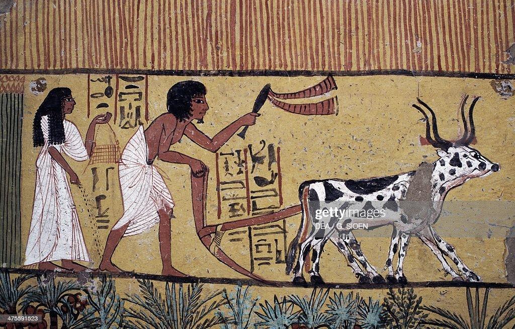 Ploughing scene... : Nachrichtenfoto