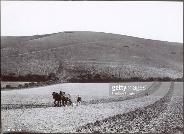 Ploughing under the shadow of the Dyke, 1930s. The print doesn't identify the exact location but it may be the Devil's Dyke near Brighton, or...