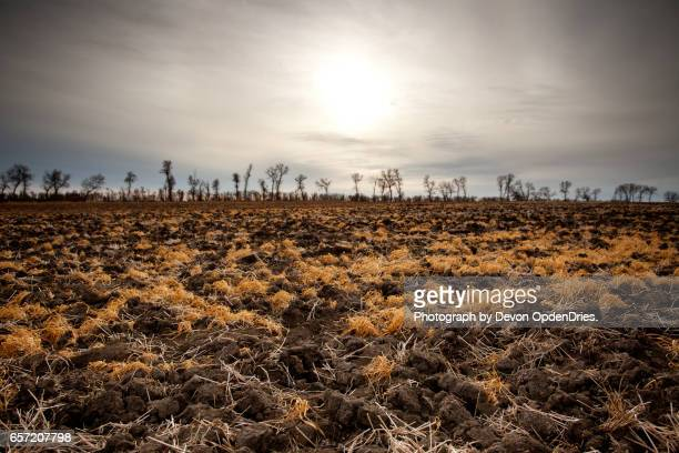 plowed field - sec photos et images de collection