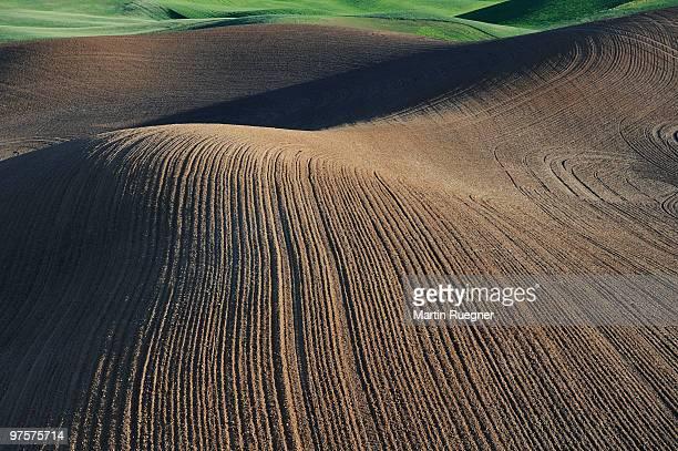 Plowed fields, aerial shot.