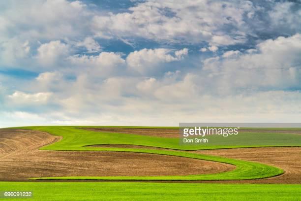 plowed fields - don smith imagens e fotografias de stock