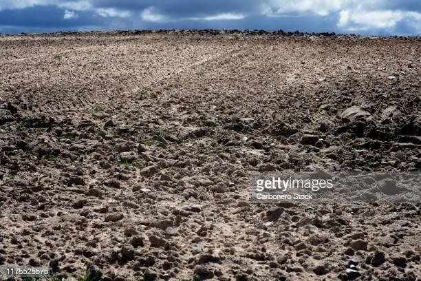 plowed land for planting - 耕す ストックフォトと画像