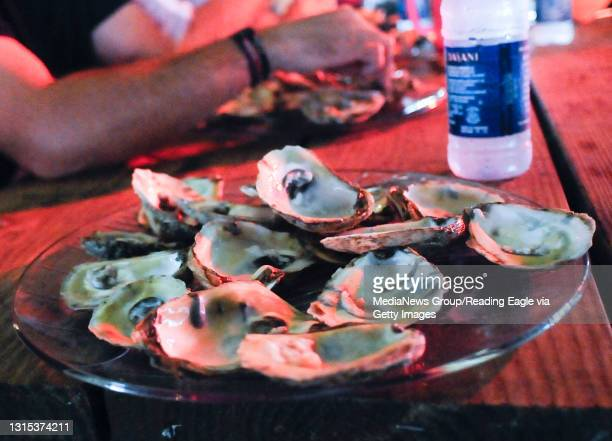 Plowville, PAA plate of oyster shells from oysters eaten by Dan Murphy of Muhlenberg, the winner in an oyster eating contest.During the Celtic Oyster...