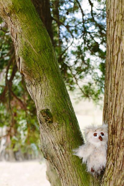 Pluche owl in tree