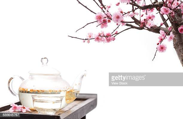Plum blossom and teapot