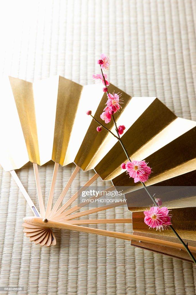 Plum blossoms and a folding fan : ストックフォト