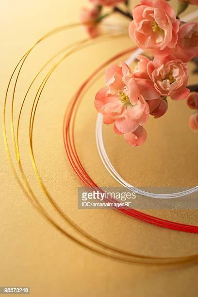 Plum blossoms and mizuhiki