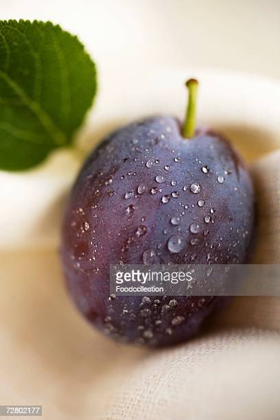 Plum with drops of water and leaf