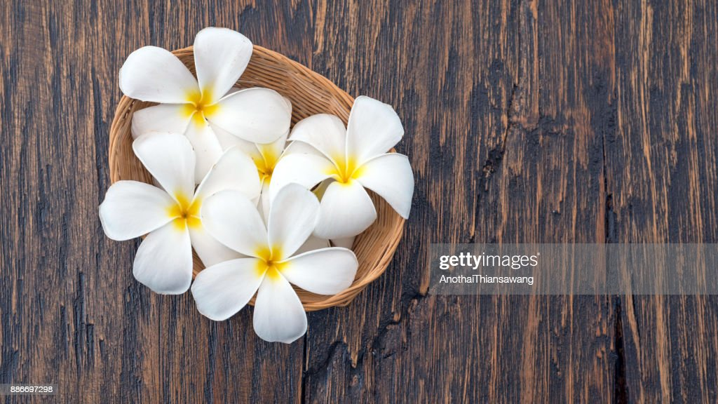 plumeria flowers in a small basket weave on wood spa background