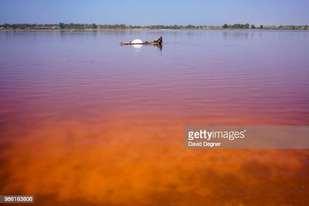 Plumes of orange and red on Lac Rose on the edge of Dakar, Senegal. Lac Rose is a saline lake that gets its color from a special type of algae and...