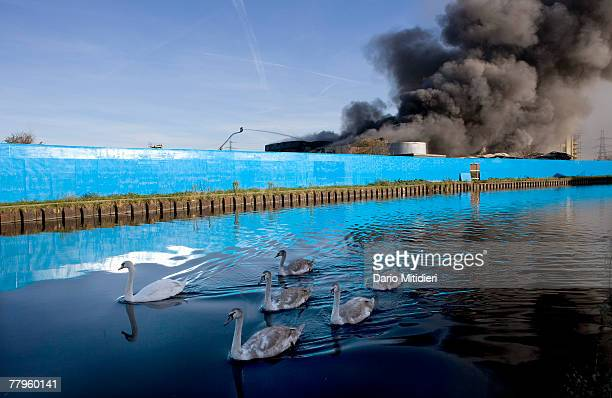 Plumes of thick black smoke rise from a fire in the vicinity of Waterden Road Hackney Wick on November 12 2007 in London England The location of the...