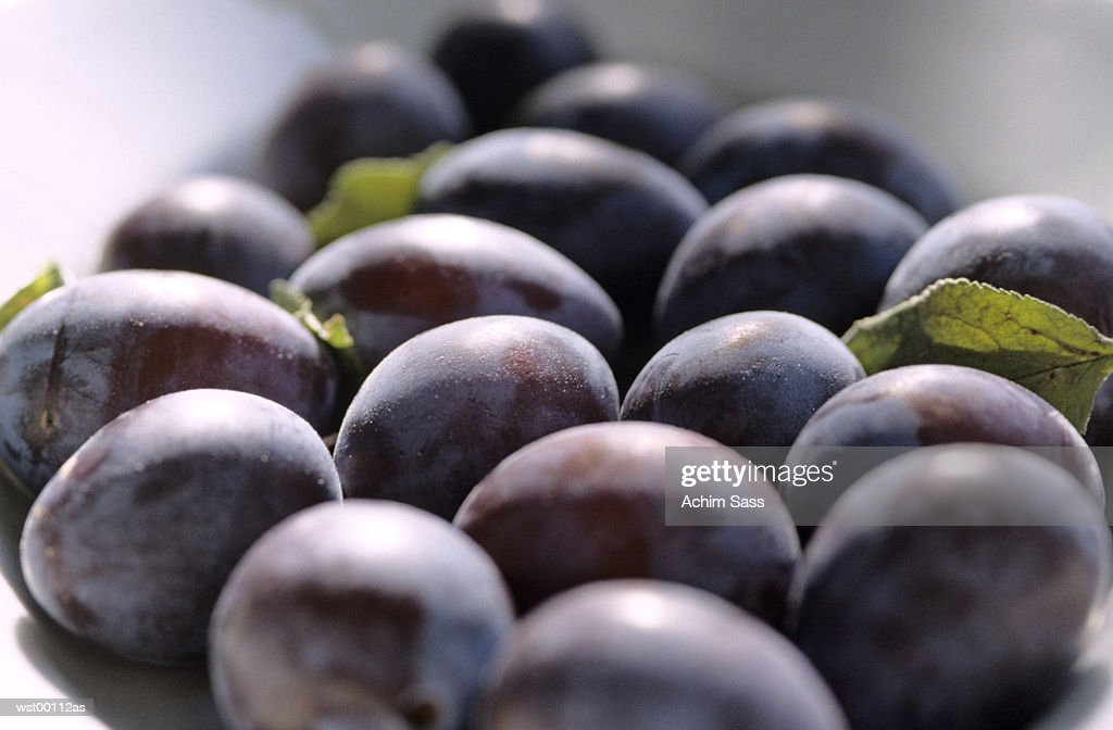 plums, close up : Stock Photo
