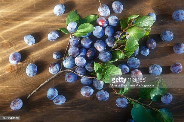 plums on a wooden table in the sun - heinz baumann photography stock-fotos und bilder