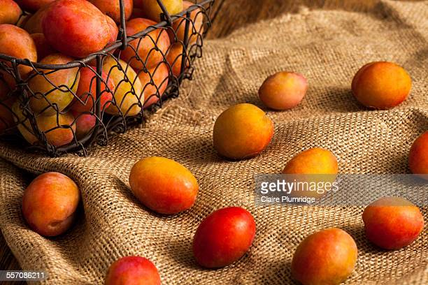plums on hessian fabric - claire plumridge stock pictures, royalty-free photos & images