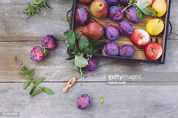 Plums, pears and apples