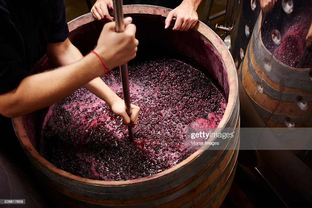 Plunging the grapes cap to extract color : Stock Photo