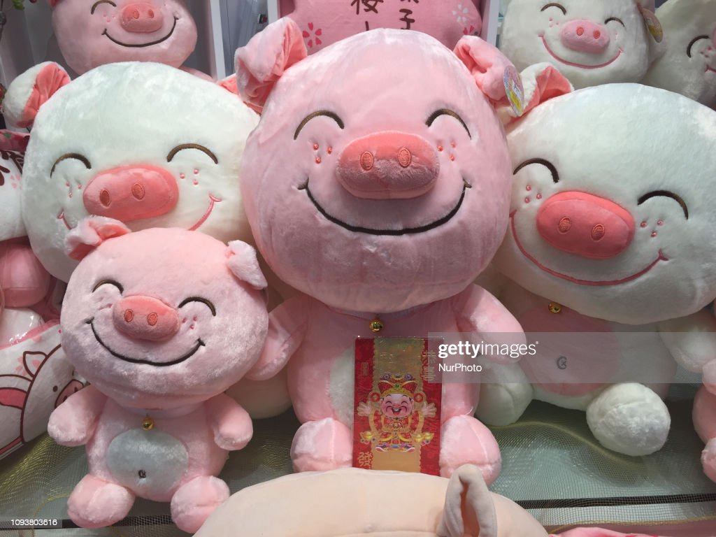 Chinese Lunar New Year Of The Pig : News Photo