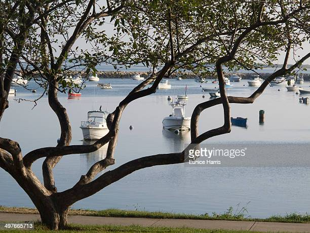 plymouth harbor - plymouth massachusetts - fotografias e filmes do acervo