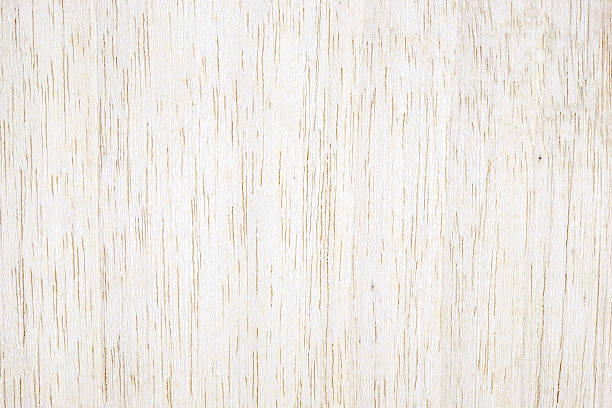 Free birch wood images pictures and royalty stock