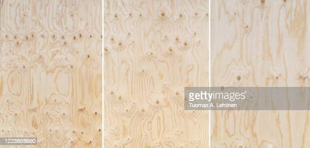 plywood texture with natural wood pattern. - wood material stock-fotos und bilder