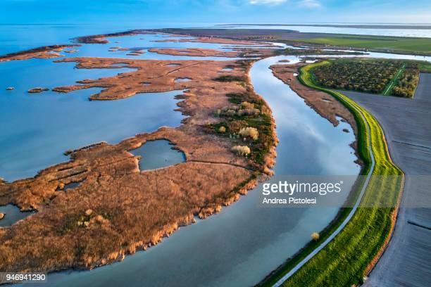 po river delta nature park, italy - broek stockfoto's en -beelden