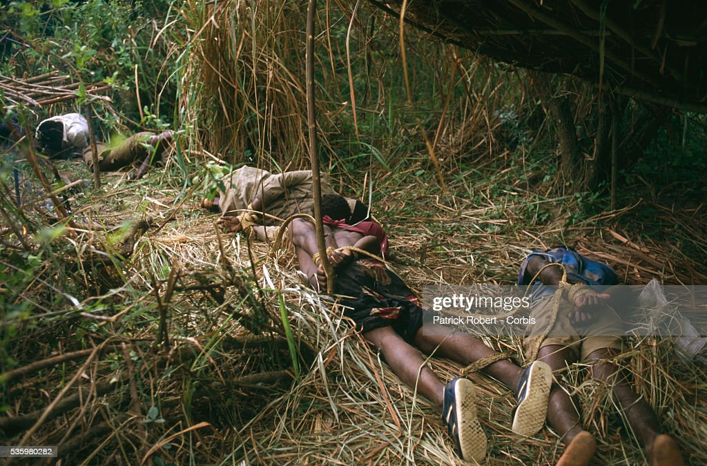 Poachers arrested by National Parks Guards lie on the ground bound with cords in Zaire. The national parks continue to struggle against the poaching of elephants and the traffic of ivory in Zaire (now the Democratic Republic of Congo).