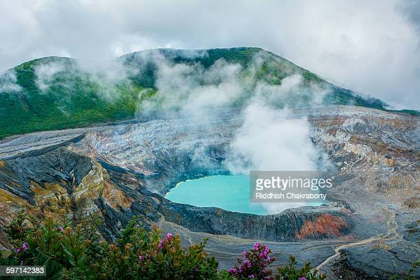 poas volcano - costa rica stock photos and pictures
