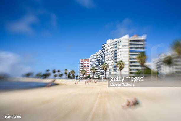 pocitos beach, montevideo, uruguay - radicella stock pictures, royalty-free photos & images
