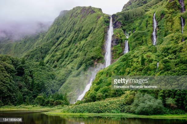 poco da ribeira do ferreiro waterfalls on flores island, azores. awesome forest and falls - iacomino portugal foto e immagini stock