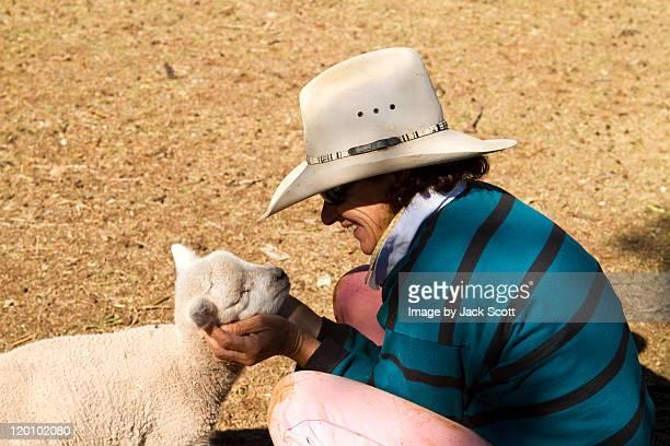 Poddy lamb
